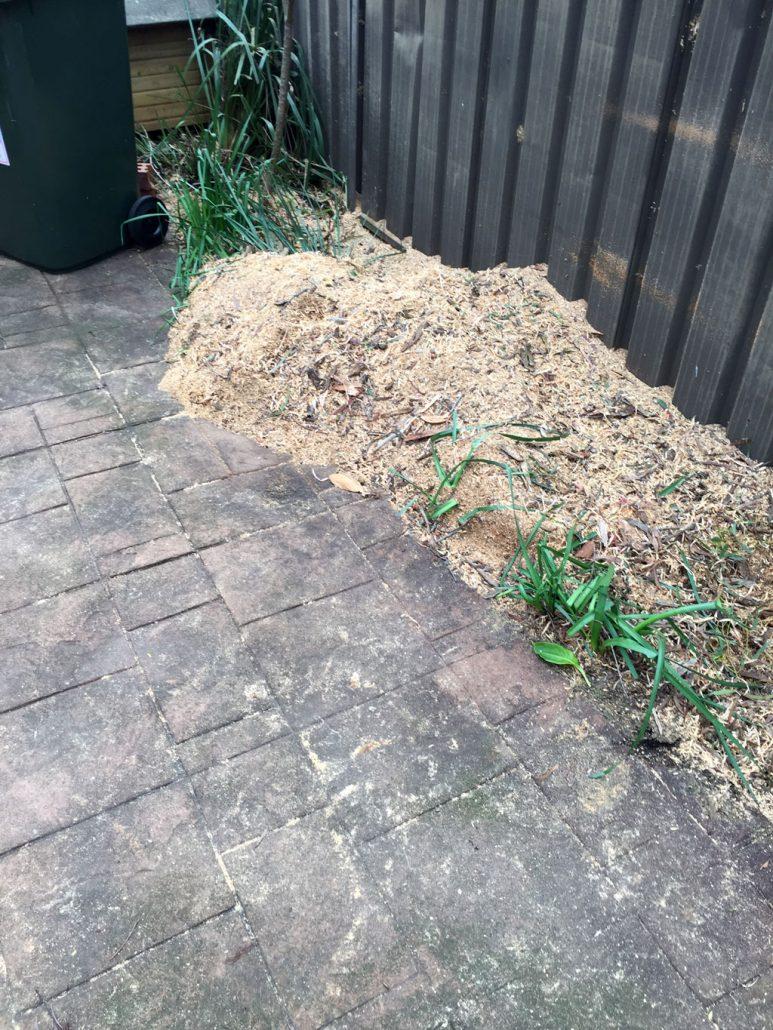 stump-grinding-chatswood